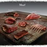 La viande Concept Art de Skyrim